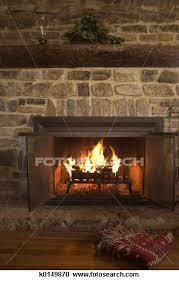 fireplace choosing an eco friendly