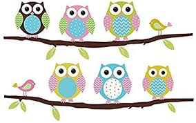 Owl Wall Sticker Fiveren Wall Decals Colorful Six Lovely Owls Stickers Removable Home Living Dinning Bedroom Kitchen Decoration Art Murals Diy Stick Girls Boys Kids Nursery Baby Playroom Decorating Amazon Com