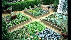 vegetable garden australia zikmund me