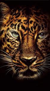 750x1334 jumanji wele to the jungle