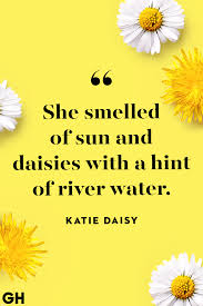 best summer quotes lovely sayings about summertime