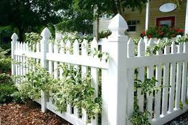 small garden fencing ideas