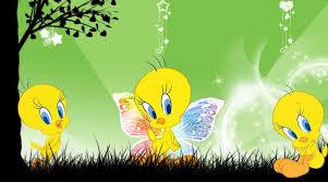 tweety bird wallpaper free on
