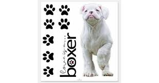 White Boxer Puppy And Dog Paw Stickers Zazzle Com