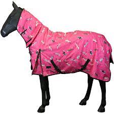 horse pony winter rain le