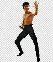 bruce lee the fighter bruce lee