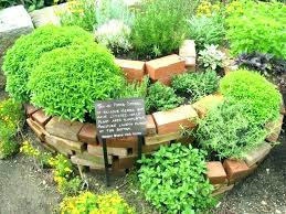 designs layouts herb garden layouts