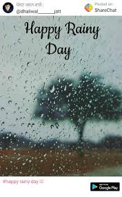 videos 2020 happy rainy day