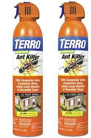 44+ Best Ant Control Company  Background