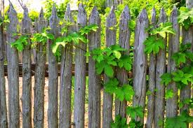 30 Tricks How To Upgrade Wood Fence For Any Backyard Simphome