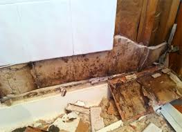 mold behind shower wall and tiles
