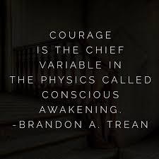 brandon a trean on ignorance wisdom courage success