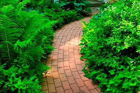 landscaping tips for philippine gardens