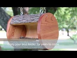 hanging log diy bird feeder plans you