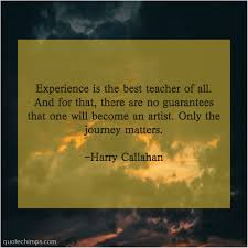 harry callahan quote chimps