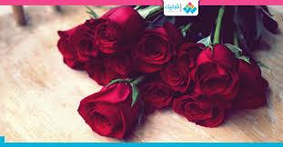 حجم 7 موقع معتمد يوم الاصدار تقديم الورد للحبيب Shpe Fresno Org