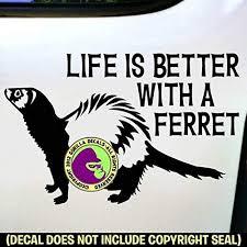 Crazy Ferret Lady Vinyl Decal Sticker Ferrets Weasel Love Sign Car Window Wall Brfvastraakanten Se