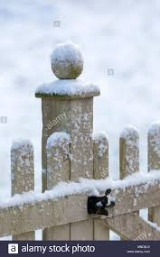 Snow Capped Wooden Fence With A Ball Finial Stock Photo Alamy