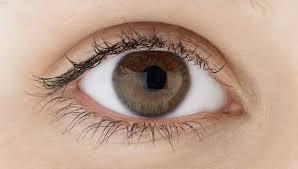 asians seek eye surgery