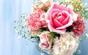 صور ورد خلفيات اجمل رمزيات الورود و الازهار هل تعلم