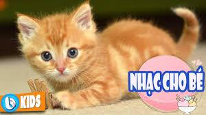Con Mèo Con Chuột ♫ Nhạc Thiếu Nhi Vui Nhộn Hay Nhất - YouTube