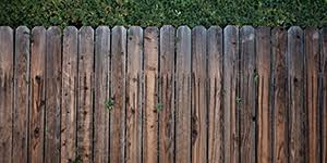 How To Clean Garden Fences Get Rid Of Green Moss Algae