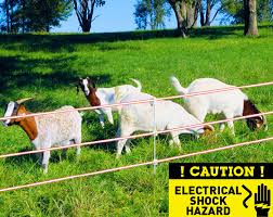 The Ultimate Guide To Import Electric Fence From China Elife