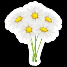 White Daisy Flower Sticker