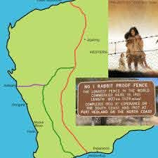 Orange Journey Rabbit Proof Fence And Government Apology