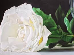 ورود بيضاء جميلة جدا
