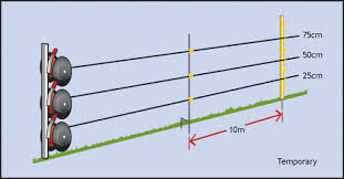 Wire Heights And Post Spacings Livestock Management Systems