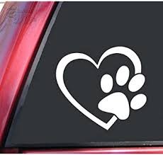 Explore Vet Tech Decals For Cars Amazon Com