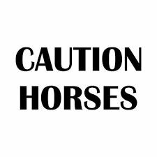 Caution Horses Vinyl Decal Sticker Yeti Tumblers Walls Windows Cars Glass D3 Ebay