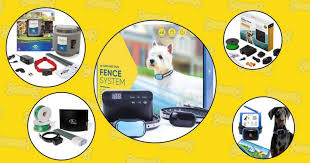 Best Wireless Invisible Dog Fences 2019 The Ultimate Guide