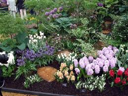 native home garden design the bulbs of