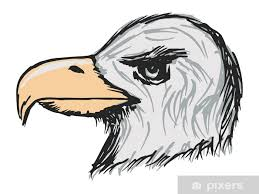 American Bald Eagle Wall Mural Pixers We Live To Change