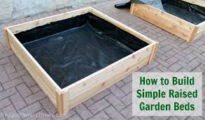 raised vegetable garden box