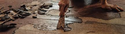 hardwood floor refinishing panies