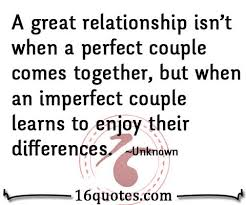 a great relationship is learning each other s differences
