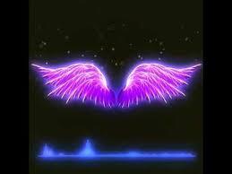 mentahan atau polosan quotes keren sayap bergerak