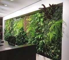 emirates house indoor green wall