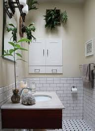 plants in the bathroom the est