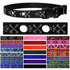 Lupine Pet Fence Collar With Pet Fence Holes