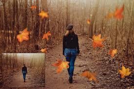 Falling leaves overlays   Autumn leaves, Autumn leaves background, Overlays