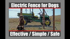 Electric Fence For Dogs Youtube