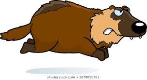 wolverine cartoon images stock photos