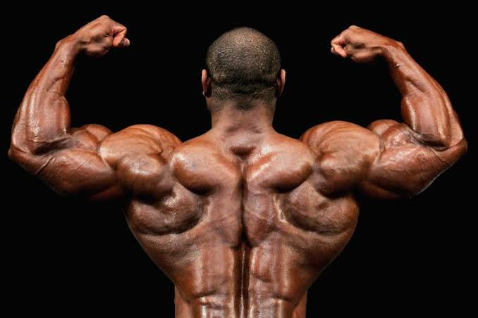 Image result for bodybuilding""