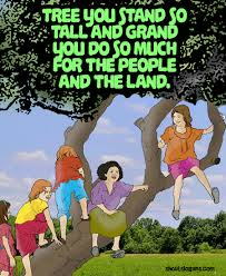 great save trees slogans quotes and posters shout slogans