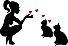 Bumper Stickers Decals Magnets Cat Lady Loves Her Cats Kitten Kittys Vinyl Car Decal Laptop Decal Car Window Wall Sticker 10 Black Bumper Stickers Decals Magnets