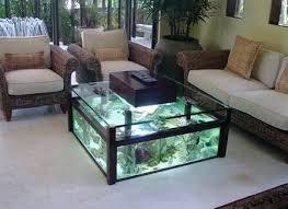 diy aquarium coffee table jerseysfan co